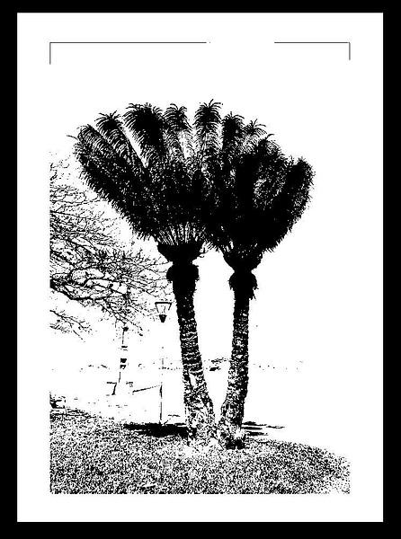 50-Tons-de-Cinza (20) by marcomachado