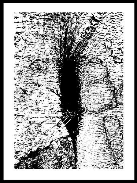 50-Tons-de-Cinza (361) by marcomachado