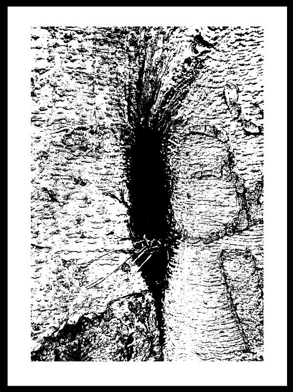 50-Tons-de-Cinza (361)