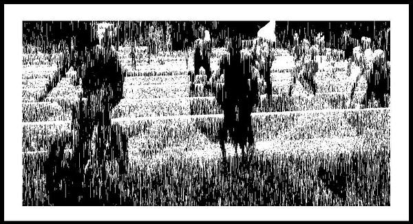 50-Tons-de-Cinza (407) by marcomachado