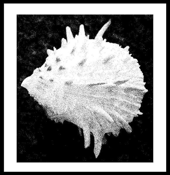 50-Tons-de-Cinza (429) by marcomachado