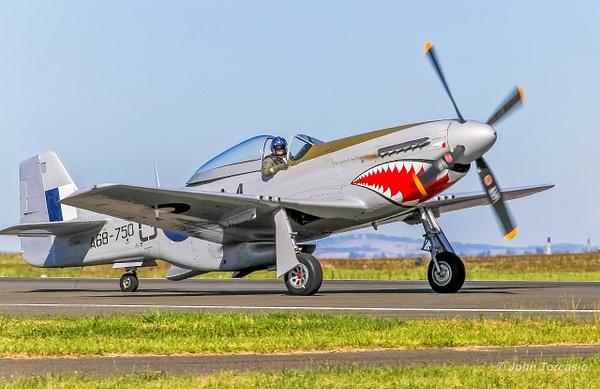 North American P-51 Mustang by John Torcasio