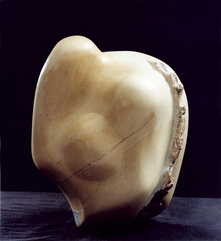 Fertility by Shimon Drory