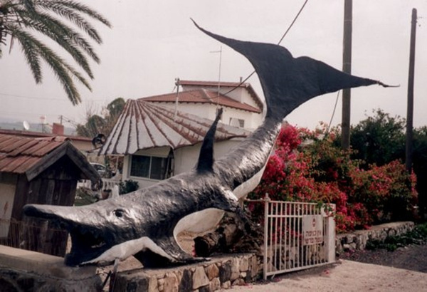 The Whale by Shimon Drory by Shimon Drory