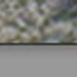 CT Web Site Header Images