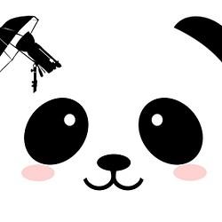 Panda Photography
