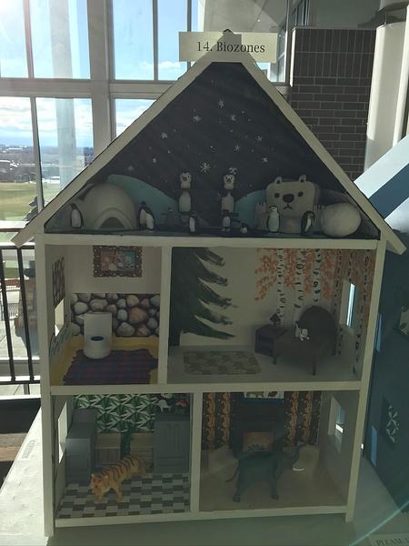 RJ1920 Geometry Tiny Tiny Houses - 14. Biozones by Regis...