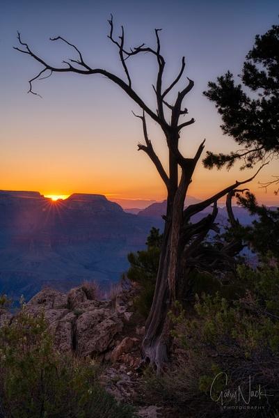 Sunrise at the Rim