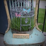 SES Spring Fling
