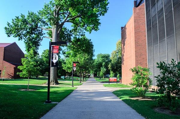 UofL-Campus-21 by davidswinney