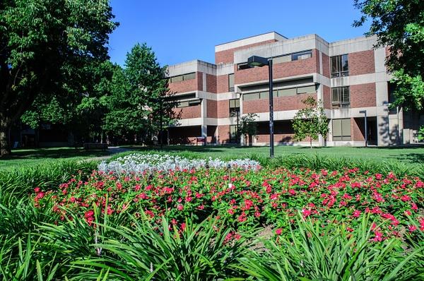 UofL-Campus-20 by davidswinney
