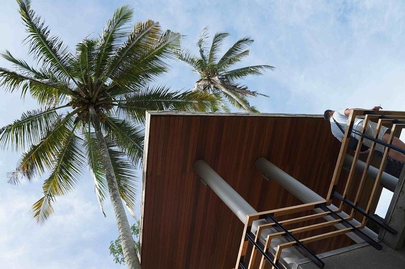 Entrance_palm_trees