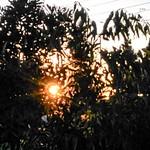 Silhouette_Astorga_P1