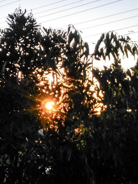 Silhouette_Astorga_P1 by LuisA-P1