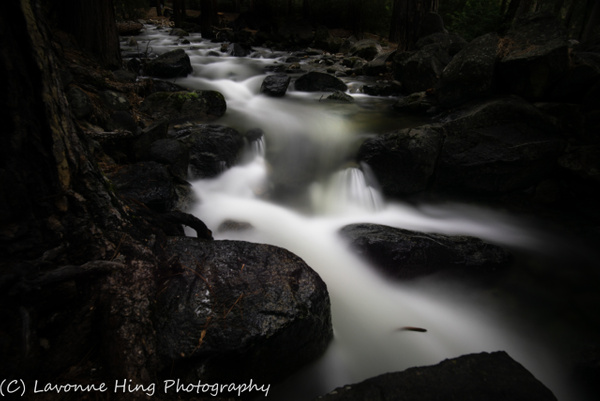 Yosemite Stream over Rocks- by LavonneHing