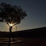 Silhouette_Le_P1
