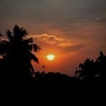 Silhouette_Devaney_p1