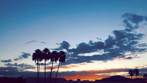 Silhouette_davis_p1 by MahrayaDavis
