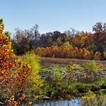 Kansas Fall 2012