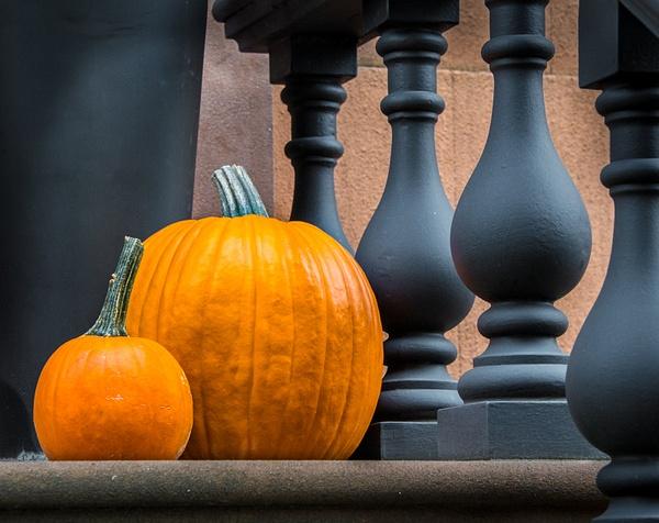 Pumpkins by MeetupPhoto