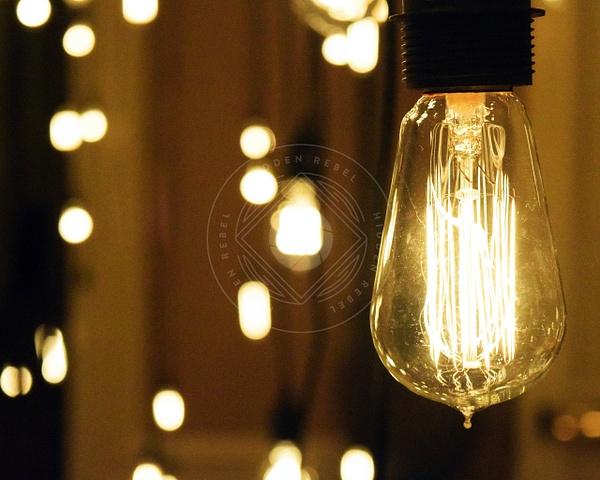 161209_grandamerica_lights by HiddenrebelBass