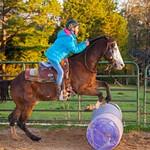 Avi-Horsemanship