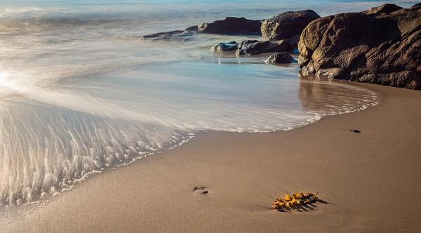 Brook Beach_8003385 by JamesALee