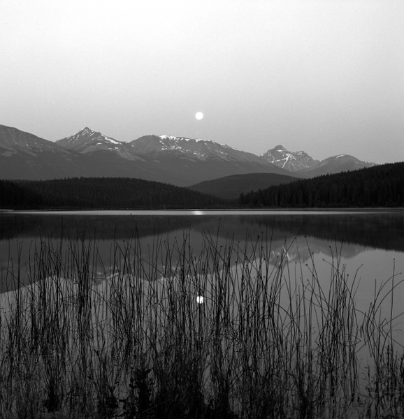 Patricia Lake Moonset by KazHamano