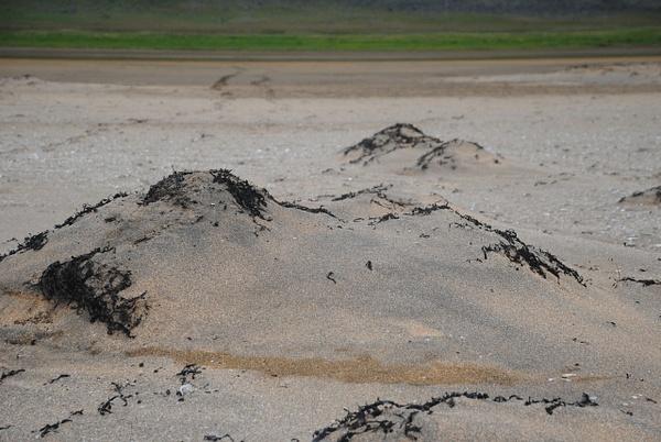 Just sand by Maria Dzeshchanka