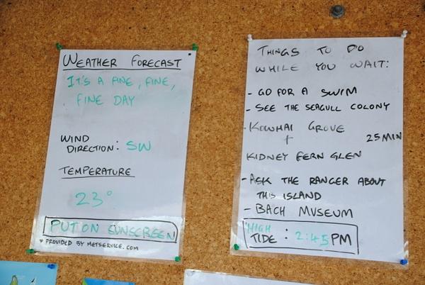 Weather forecast at Rangitoto Island by Maria Dzeshchanka