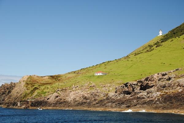 Bay of Islands: Cape Brett by Maria Dzeshchanka