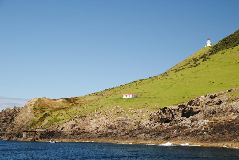 Bay of Islands: Cape Brett