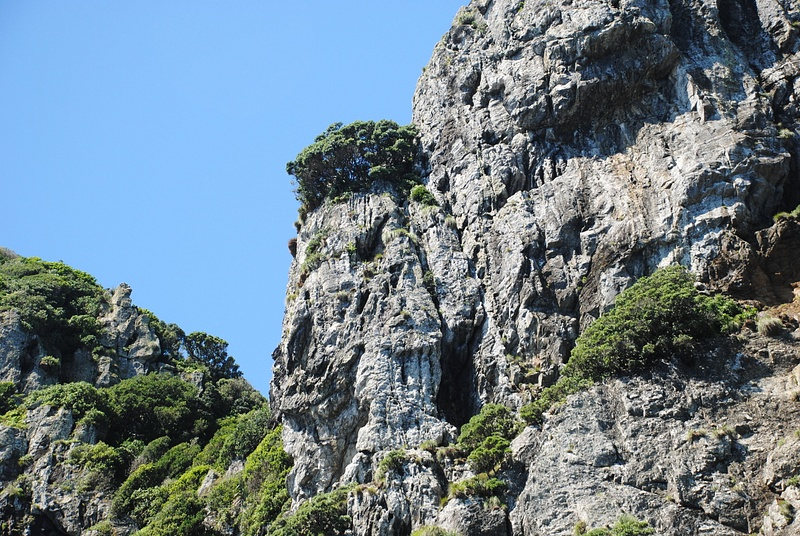 Motukokako (Hole in the Rock)