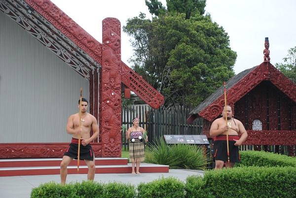 Te Puia: Maori show by Maria Dzeshchanka