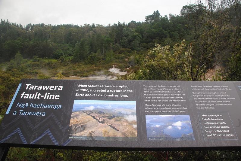 Tarawera fault-line
