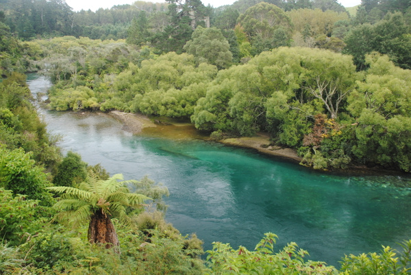 On the way from Huka Falls to Taupo by Maria Dzeshchanka