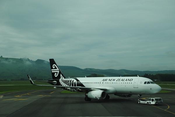 Dunedin airport by Maria Dzeshchanka