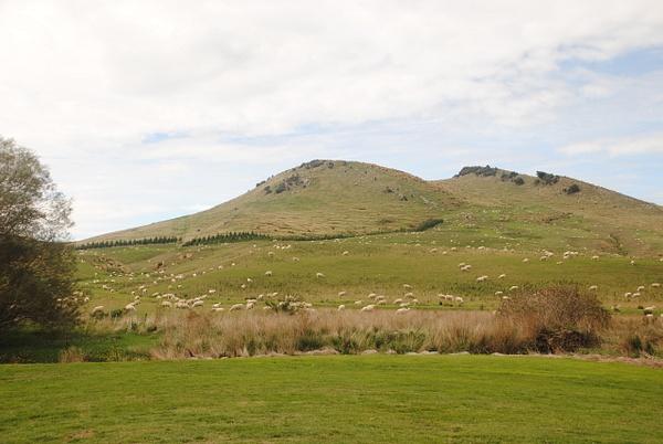 On the road from Dunedin to Invercargill by Maria Dzeshchanka