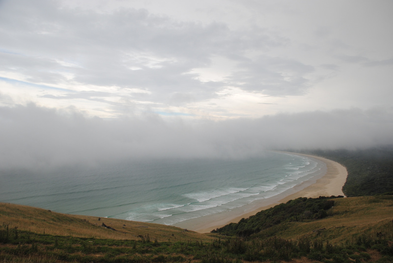 Foggy viewpoint