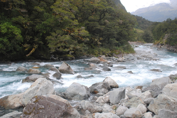 Some nice waterfall on the road to Milford Sound by Maria Dzeshchanka