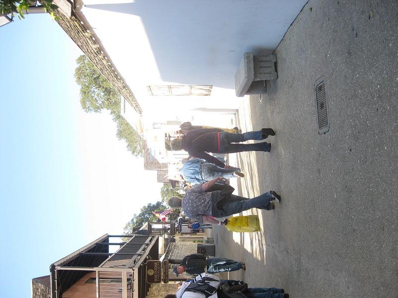 florida2011-81