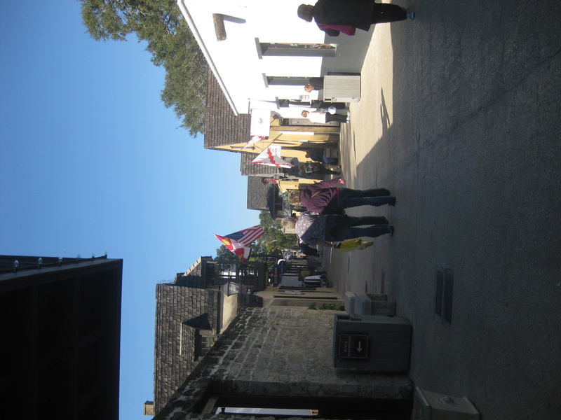 florida2011-82
