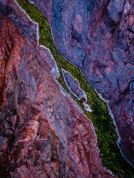 Pool Of Color - Grand Canyon by Cass Kalinski