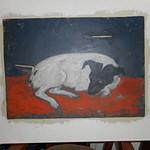 Katrina's Dog