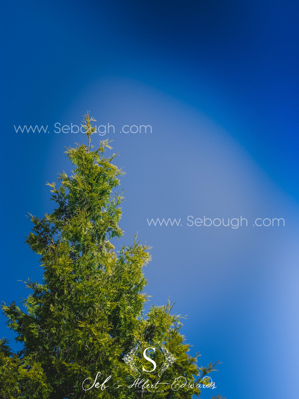Sebough Albert Edwards Photo-129
