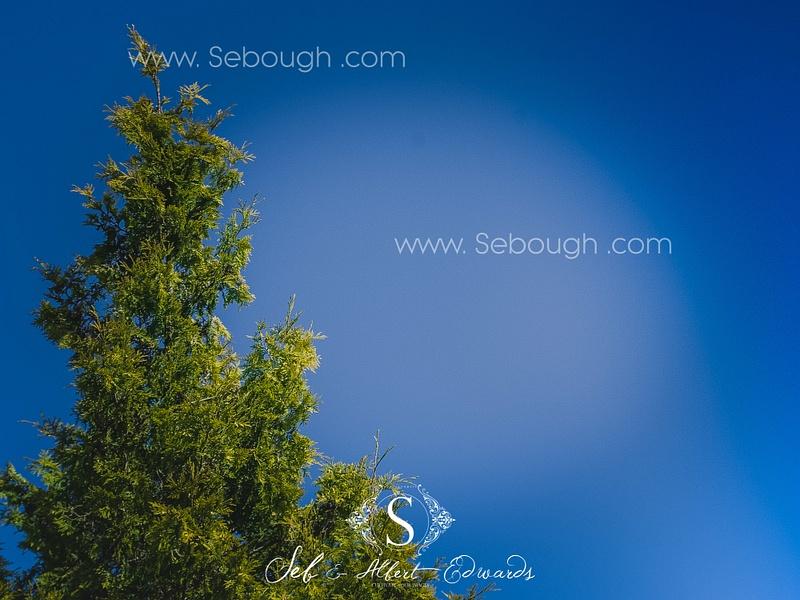 Sebough Albert Edwards Photo-130