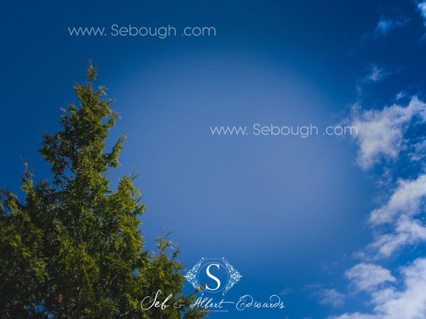 Sebough Albert Edwards Photo-144 by SeboughAlbertedwards