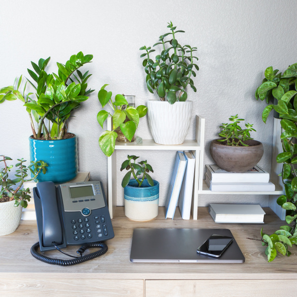Ooma_S4_Spring Time Desk_01 (1) (1) by VanessaKahn20800