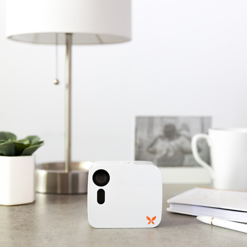 Ooma_Sept_S5_White Butterfleye_01