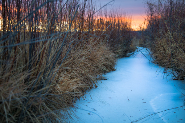 Ice Way by TheoWecker